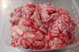 cuisiner cervelle cervelle de porc porc ferm 278 cervelle de porc