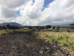 Kohala Pumpkin Patch 2014 by Upcoming Events U2014 Hawaii Wildfire Management Organization