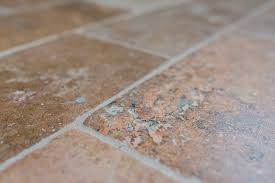 tile repair different kinds tips local pros