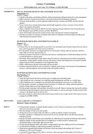 Download Business Banking Relationship Manager Resume Sample As Image File