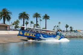 San Diego Seal Tours | San Diego Duck Tours