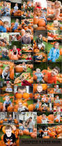 Pumpkin Patch Katy Tx by 152 Best Theme Photo Sessions Images On Pinterest Fall Photos