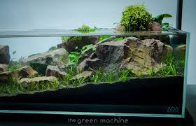 Continuity Aquascape Video & Gallery By James Findley - The Green ... Out Of Ideas How To Draw Inspiration From Others Aquascapes Aquascaping Aquarium The Art The Planted Plant Stock Photo 65827924 Shutterstock Continuity Aquascape Video Gallery By James Findley Green With River Rocks Aqua Rebell Qualifyings For 2015 Maintenance And Care Guide Outstanding Saltwater Designs 2012 Part 1 Youtube Dennerle Workshop Fish