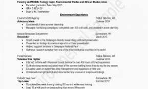 Related Posts For Resume Format Construction Store Incharge Luxury Management Template Convenience Manager