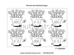 IQ Training Find The Two Identical Pictures With Potted Flowers Visual Puzzle And Coloring Page