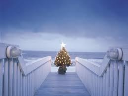 Crab Pot Christmas Trees by Coastal Christmas Decorating Cereusart A Coastal Lifestyle Blog