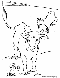 Cows In The Pasture Coloring Page