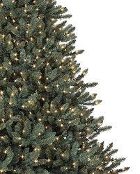 Black Slim Christmas Tree Pre Lit by Blue Spruce Christmas Tree Balsam Hill
