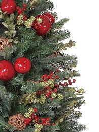Plantable Christmas Trees For Sale by Norway Spruce Potted Christmas Tree Balsam Hill