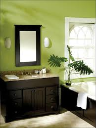 Plants For Bathroom Counter by Kitchen Cool Kitchen Design Bertch Cabinets Black Countertop