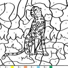 Turtle Tiger Color By Number Coloring Page