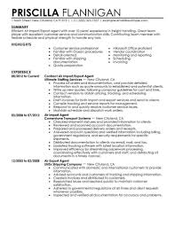Air Import Export Agent Government Military Contemporary 1 18 Resume