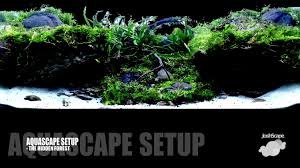 Aquascape Setup - The Hidden Forest - YouTube Aquascape Of The Month June 2015 Himalayan Forest Aquascaping Interesting Driftwood Placement Aquascapes Pinterest About The Greener Side Aquascaping Design Checklist Planted Tank Forum Simons Blog Decoration Bring Nature Inside Home Ideas Downhill By Arie Raditya Aquarium 258232 Aquaria Creating With Earth Water Fire Air Space New Aquascapemarch 13 2016page 14 Page 8 Aquapetzcom Magical Youtube 386 Best Tank Images On Aquascape