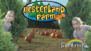 Flower Mound Pumpkin Patch Groupon by Yesterland Farm Fall Festival And Pumpkin Patch Youtube