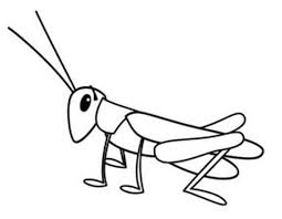 Grasshopper Tiny Coloring Page