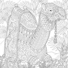 Adult Coloring Pages Zentangle By ColoringPageExpress