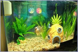 Spongebob Aquarium Decorating Kit by Walmart Fish Tank Accessories All The Best Accessories In 2017