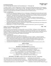 CEO Chief Executive Officer Resume