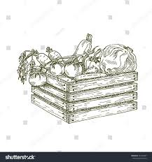 Wooden Box With Vegetablesvector Hand Drawing