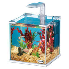shop top fin aquarium on wanelo