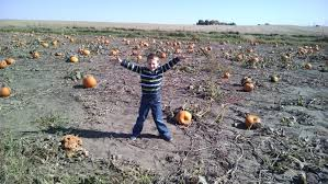 Central Iowa Pumpkin Patches by Kidspert Night Eyes Freys And Ledges Weekend