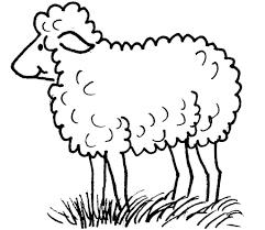 Livre De Coloriage Moutons Thème 2 Vecteurs Libres De Droits Et