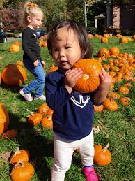 Best Pumpkin Picking In South Jersey by It U0027s Pumpkin Patch Time At Wyoming Presbyterian Church Millburn