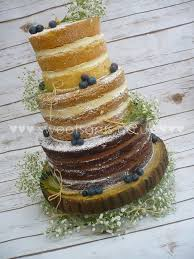 Naked Rustic Ombre Wedding Cake With Gypsophelia And Blueberrys
