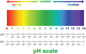 100 Ph Of 1 The More Alkaline The Better Is A PH 95 Healthier Than