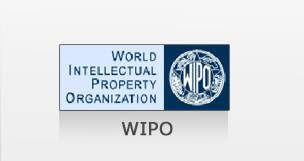 wipo international bureau cyber laws consulting center wipo
