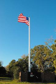 cell phone tower flag pole