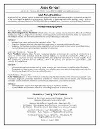 Nursing Student Resume With No Experience New Sample Rn Unique Examples Clinical