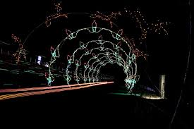 lights near me decoration best displays