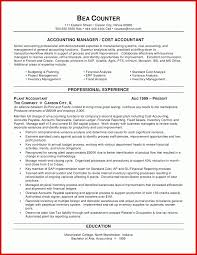 Resume Examples Entry Level Accounting Domov