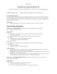 Bank Branch Manager Resume Banking Executive Sample Example