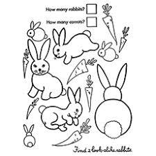 Rabbit Activity Coloring Sheet