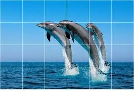 dolphin photo wall back splash tile mural 1451 style