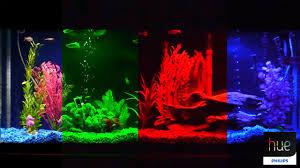 philips hue lightstrip plus aquarium led rgb light retrofit