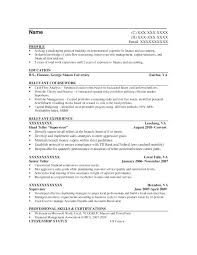 Example Entry Level Resume Objective Statements Sample It Release With Medium Image