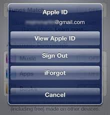 How To Change The Apple ID on iPad or iPhone CafeiOS