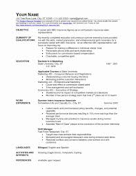 Fast Food Restaurant Cashier Resume Sample Stibera Resumes Throughout Examples
