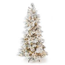75 Pre Lit Flocked Christmas Tree by Lightly Flocked Snowbell Pine Pre Lit Full Christmas Tree Hayneedle