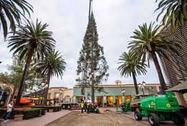 A Crane And Crew Members Of Victors Custom Christmas Trees Move The 90 Foot Tree Into Place At Fashion Island In Newport Beach Early Wednesday