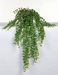 hängende kunstpflanze birkenfeige im topf