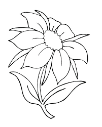 Free Coloring Pictures Of Flowers And Butterflies Flower Page Printable Sheets Nature Pages