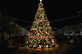 Becks Christmas Tree Farm by Christmas Tree Farms Utah Christmas Lights Decoration