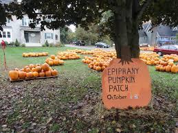 Pumpkin Patch Massachusetts by Pumpkin Picking At Epiphany Parish Walpole Ma Patch