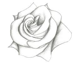 Pencil Drawn Easy Sketches Of Flowers Flower Simple Art