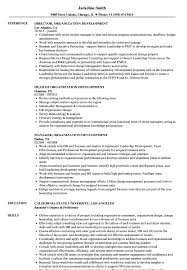 Organization Development Resume Samples | Velvet Jobs Creative Resume Templates Free Word Perfect Elegant Best Organizational Development Cover Letter Examples Livecareer Entrylevel Software Engineer Sample Monstercom Essay Template Rumes Chicago Style Essayple With Order Of Writing Ulm University Of Louisiana At Monroe 1112 Resume Job Goals Examples Southbeachcafesfcom Professional Senior Vice President Client Operations To What Should A Finance Intern Look Like Human Rources Hr Tips Rg How Write No Job Experience Topresume 12 For First Time Seekers Jobapplication Packet Assignment
