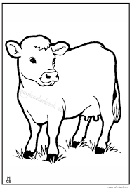 Cow Animal Coloring Book Pages